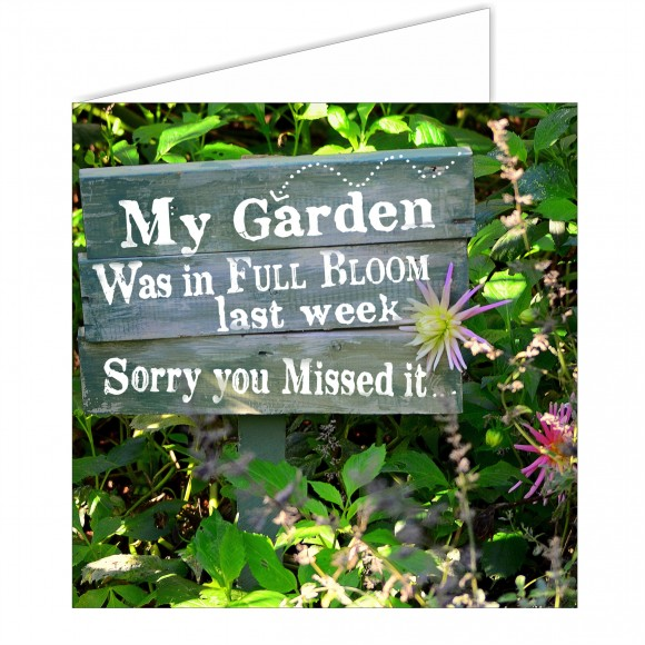 Greeting Card - In Bloom, Sorry You Missed It