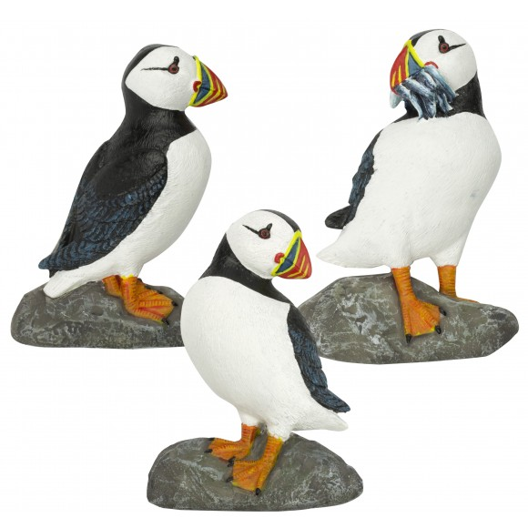 Puffins on Rocks Magnets, 7cm, 3 assorted