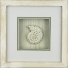 Nautilus Framed Décor, 23cm