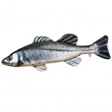 Sea Bass Cushion