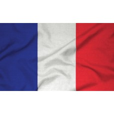 Courtesy Flag - France, 30x45cm