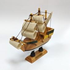Mayflower, 10cm